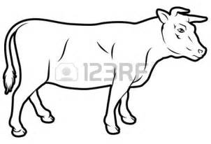 Beef Cow Coloring Page