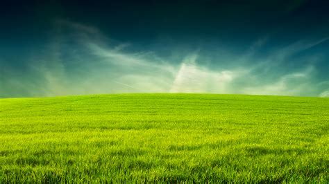 Grass Backgrounds Free  Page 3 Of 3 Wallpaperwiki