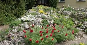 Steingarten Bilder Beispiele : steingarten gestalten steingarten gestalten ideen nowaday garden wie sie den steingarten ~ Whattoseeinmadrid.com Haus und Dekorationen