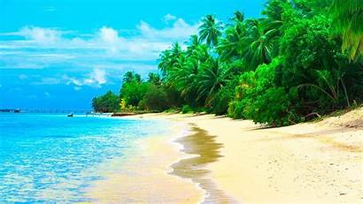Beach Desktop Summer Sandy Maldives Coconut Waves