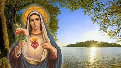 Mary Mother Wallpapers Christian Desktop Matha Velankanni