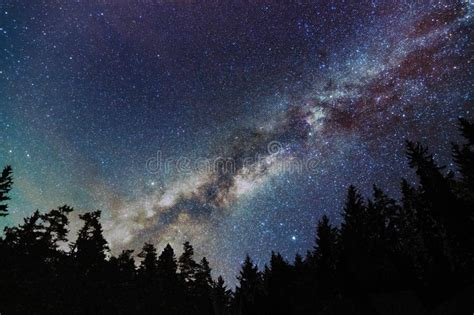 Milky Way Galaxy Starry Sky With Trees Starry Night