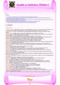 candide voltaire resume court تلخيص شامل للرواية r 233 sum 233 de candide ou l optimisme voltaire