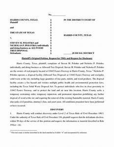Texas Temporary Orders Form Fake Restraining