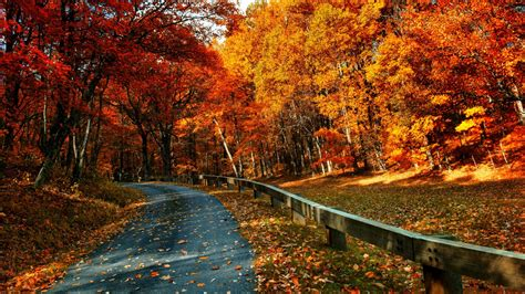 Gentle Breeze of Autumn always Makes Me Fall In Love With ...