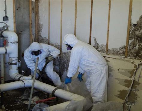 asbestos removal industrial lead abatement  mold abatement