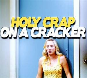 holy crap on a ... Holy Funny Quotes