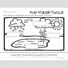 Water Cycle Poster  Classroom Display And Practice Worksheets Tpt