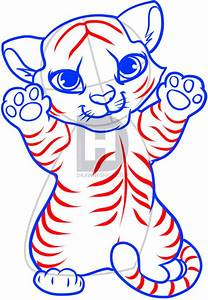 How To Draw A Tiger Cub  Tiger Cub  Step By Step  Drawing