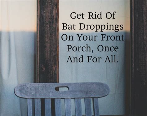 get rid of bat droppings on your front porch once and for all