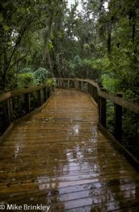 corkscrew sanctuary officially named wetland