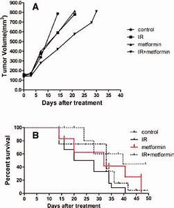 Effects Of Metformin On Radiosensitivity Of Prostate