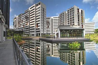 Housing Sutd Student Architecture Staff Architects Singapore
