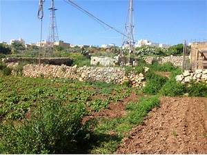 Farmhouse For Sale Gozo Xaghra Gozo 240031019 3428