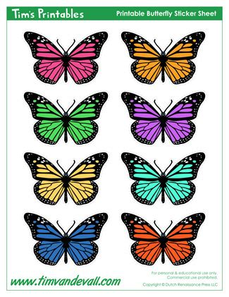 butterfly templates butterfly shapes tims printables