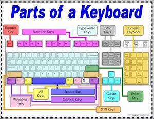 COMPUTERHWS: PARTS OF A COMPUTER KEYBOARD
