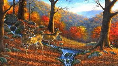 Deer Wildlife Desktop Autumn Backgrounds Fall Animals