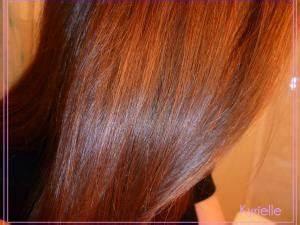 Cheveux Couleur Noisette : coloration logona noisette cuivr e par kyrielle ~ Melissatoandfro.com Idées de Décoration