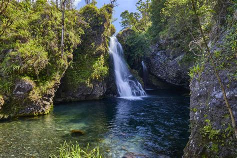 I arrived at the meeting point, but no tour guide. The Complete Guide to Driving Maui's Road to Hana
