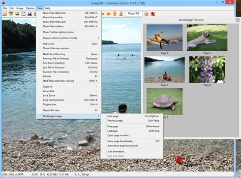 Irfanview Screenshots