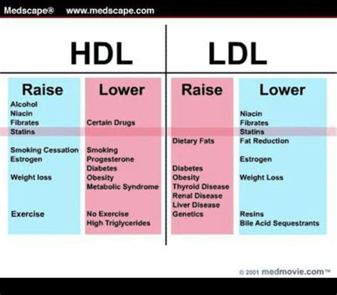 cholesterol levels chart breeds picture