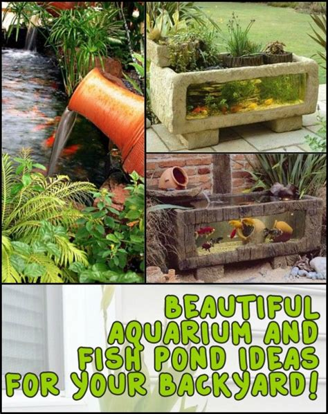 water features images  pinterest  project backyard ideas  beautiful gardens