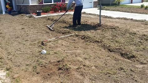 lawn installation sod installation savannah free estimates chatham property maintenance
