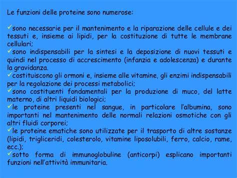 alimenti favoriscono la produzione di latte materno alimenti