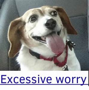 Excessive Worry... Worried Meme