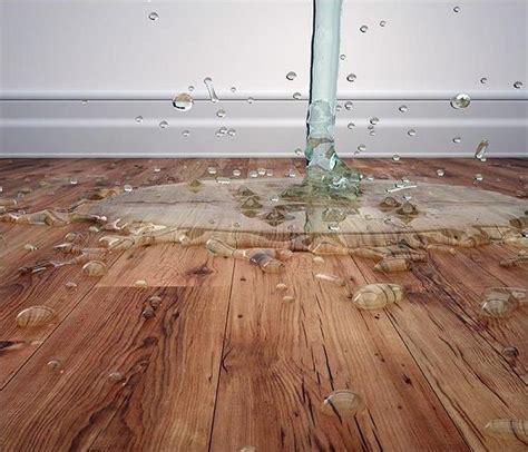 water damage damage mold restoration services