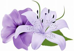 exotic flower clip art - Clipground