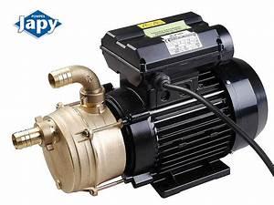 Pompe A Fioul Electrique : pompe electrique gasoil distributeur transfert gasoil pompes japy page 2 ~ Melissatoandfro.com Idées de Décoration