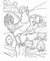 Coloring Rooster Fence Farm Gambar Printable Untuk Crowing Diwarnai Sketsa Crowed Hewan Animal Binatang Coloringsky Library Mewarnai Fun Sheets Comments sketch template