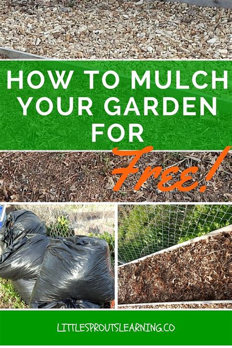 mulching your garden how to mulch your garden for free gardens the o jays and why not