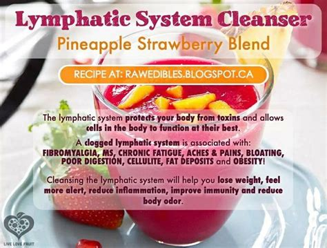 lymphatic system juice smoothie mix detox diet drink pineapple blend juicing cleanse foods smoothies food healthy blood liver drinks cleanser