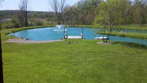 size of pond what type of pond to build take a look and discover their benefits
