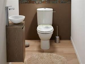 Toilettes Sèches Leroy Merlin : 301 moved permanently ~ Melissatoandfro.com Idées de Décoration
