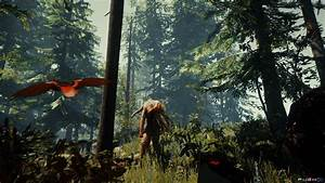 The Forest  Ps4    Playstation 4  News  Reviews  Trailer