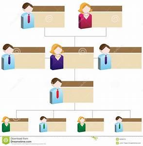 Organizational Domain Chart Diversity Organizational Chart Royalty Free Stock Images