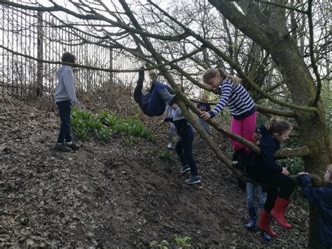 forest school willow dowson primary academy