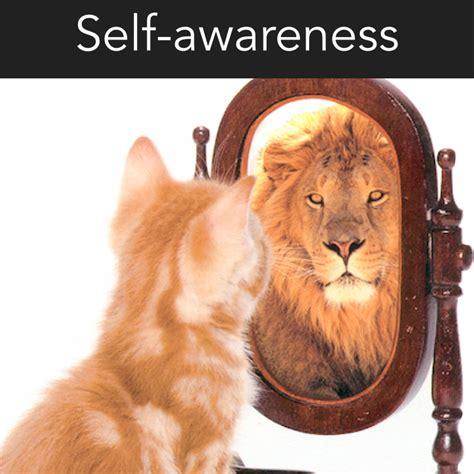 awareness  key  unlocking  stephen