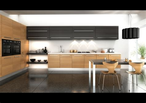 cuisines moderne cuisine et bois moderne et élégante
