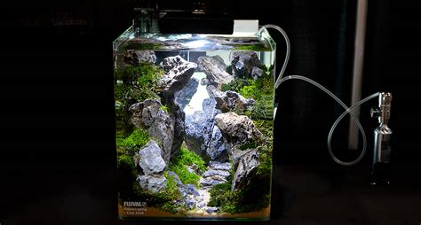 Aquascape Nano by The Mind Bending Nano Aquascape Of Pini