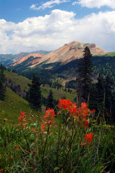 ouray colorado gateway reservations lodging