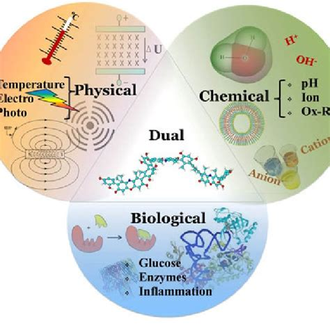 (PDF) Stimuli-Responsive Polymers and Their Applications in Nanomedicine