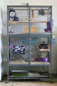 Chinchilla Cages | Car Interior Design