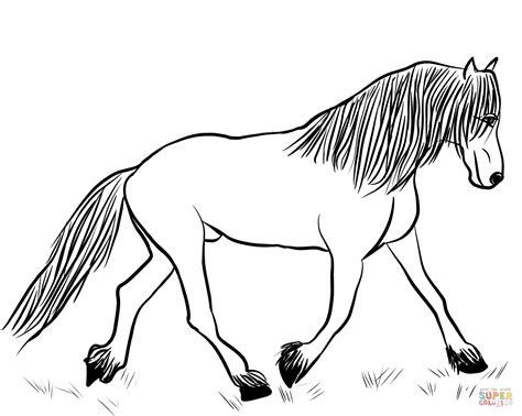 Paarden Kleurplaten Fries by Fries Paard Kleurplaat