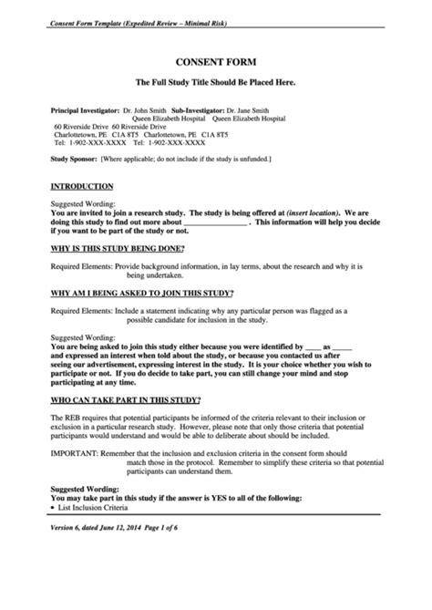research ethics board reb consent form template