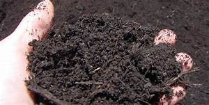 Manure & Compost Supply