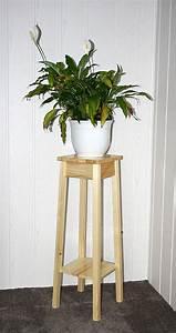 Dekosäule Holz Massiv : blumenhocker natur lackiert blumentisch 80cm beistelltisch holz massiv ~ Sanjose-hotels-ca.com Haus und Dekorationen